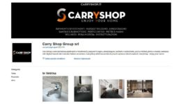 carryshop_ebay